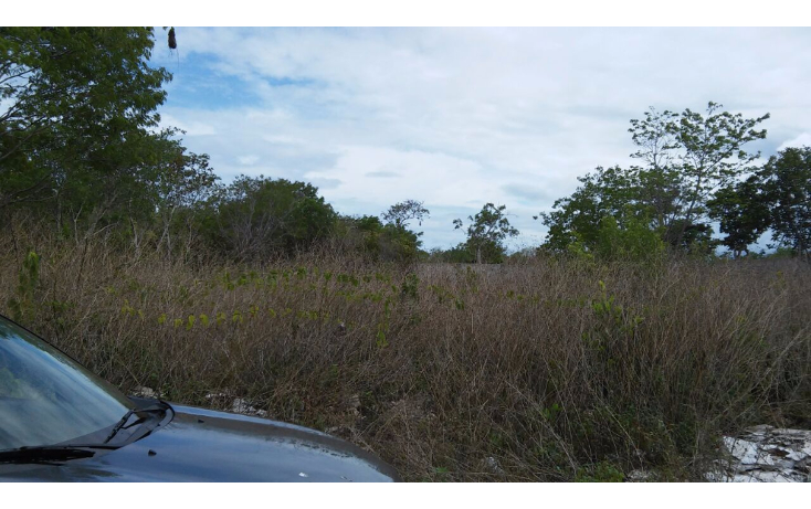 Foto de terreno comercial en venta en  , cancún centro, benito juárez, quintana roo, 1205103 No. 04