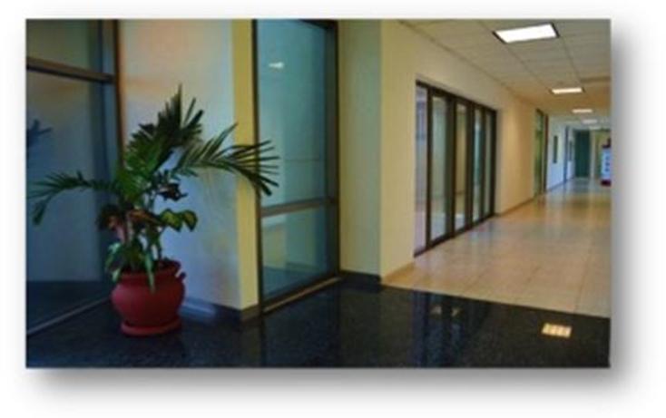 Foto de oficina en renta en  , cancún centro, benito juárez, quintana roo, 1380693 No. 10