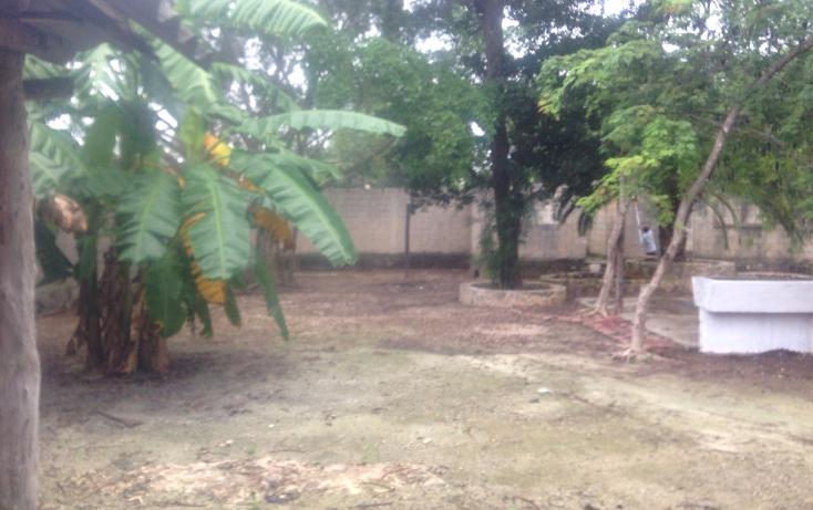 Foto de terreno habitacional en venta en  , cancún centro, benito juárez, quintana roo, 1567214 No. 05