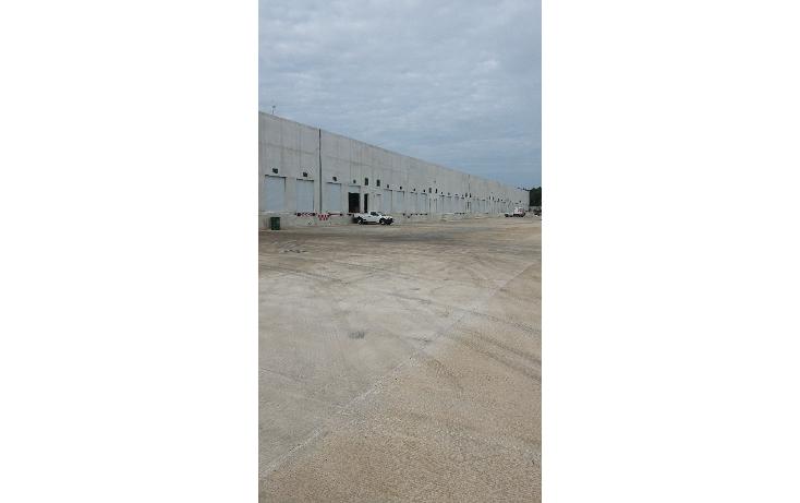 Foto de nave industrial en renta en  , cancún centro, benito juárez, quintana roo, 1604830 No. 01