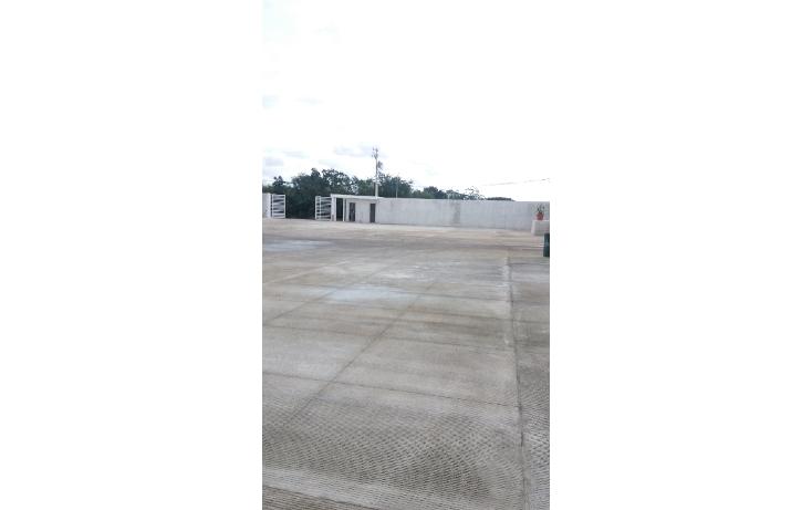 Foto de nave industrial en renta en  , cancún centro, benito juárez, quintana roo, 1604830 No. 02