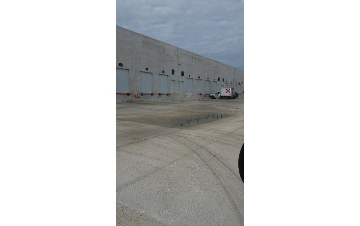 Foto de nave industrial en renta en  , cancún centro, benito juárez, quintana roo, 1604830 No. 03