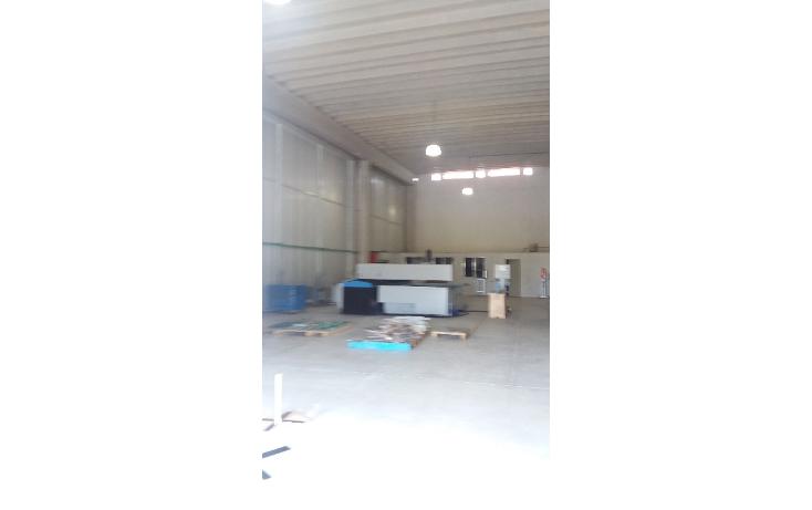 Foto de nave industrial en renta en  , cancún centro, benito juárez, quintana roo, 1604830 No. 05