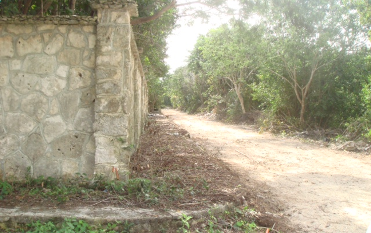 Foto de terreno habitacional en venta en  , canc?n centro, benito ju?rez, quintana roo, 1973032 No. 01