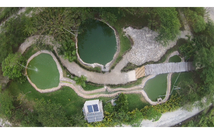 Foto de terreno habitacional en venta en  , canc?n (internacional de canc?n), benito ju?rez, quintana roo, 1055959 No. 15