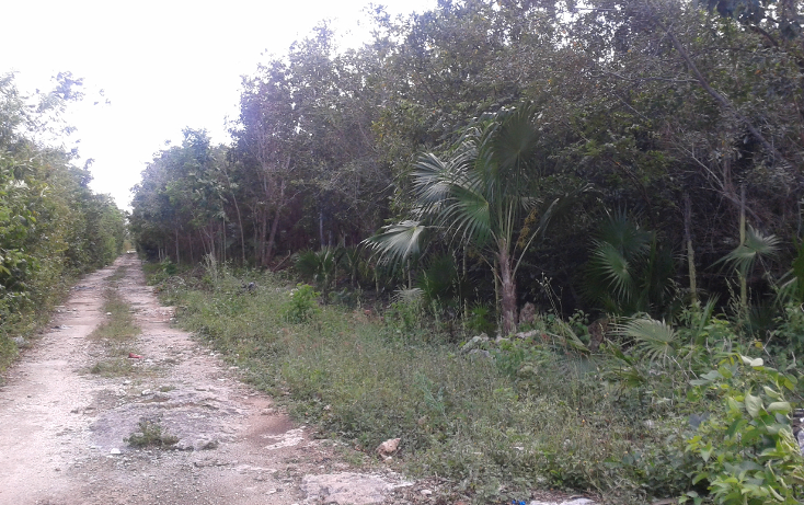 Foto de terreno habitacional en venta en  , cancún (internacional de cancún), benito juárez, quintana roo, 1271649 No. 01