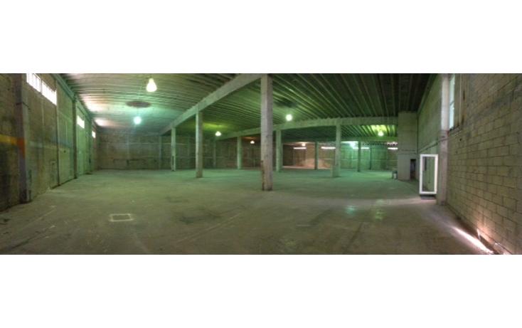 Foto de nave industrial en venta en  , cancún (internacional de cancún), benito juárez, quintana roo, 1330421 No. 02