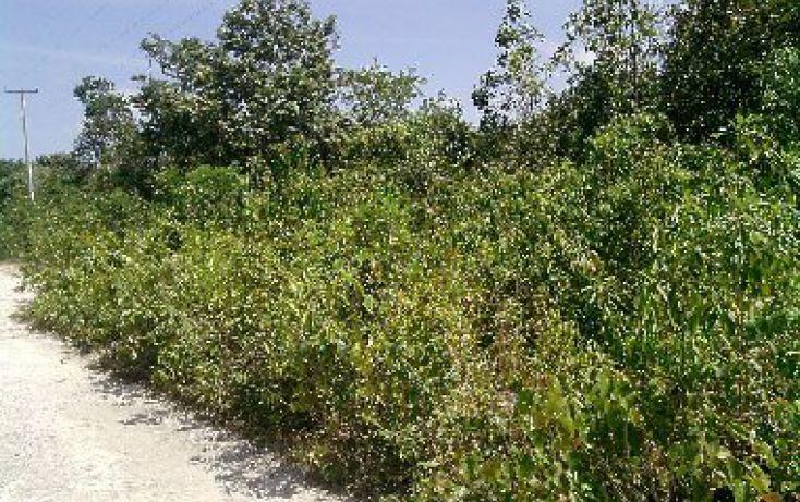 Foto de terreno comercial en venta en, cancún internacional de cancún, benito juárez, quintana roo, 1337739 no 01