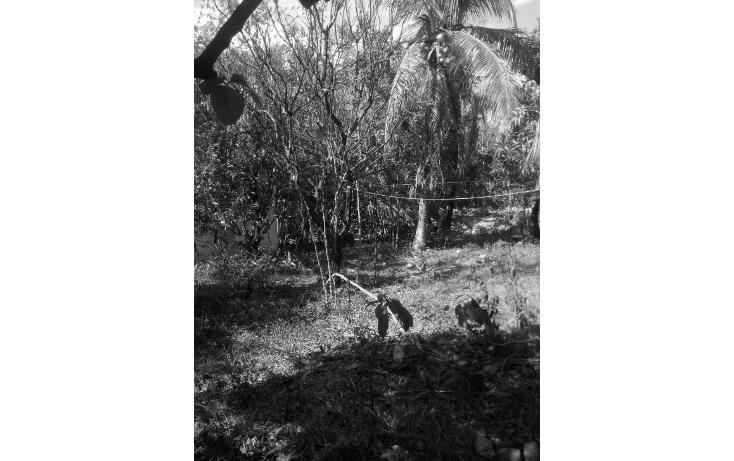 Foto de casa en venta en  , candelaria, valladolid, yucatán, 1052055 No. 16