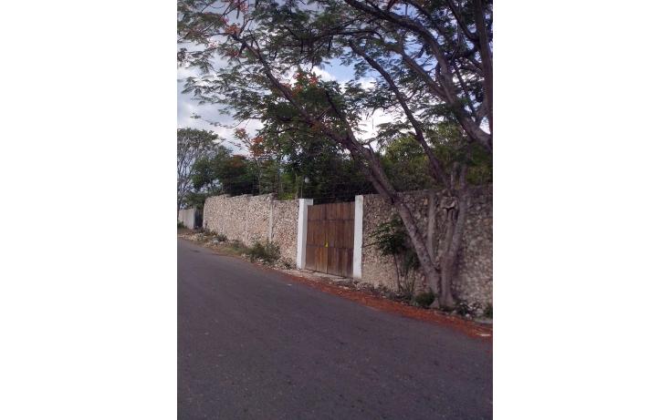 Foto de casa en renta en  , candelaria, valladolid, yucatán, 1633118 No. 05