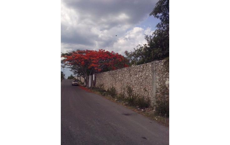 Foto de casa en renta en  , candelaria, valladolid, yucatán, 1633118 No. 07
