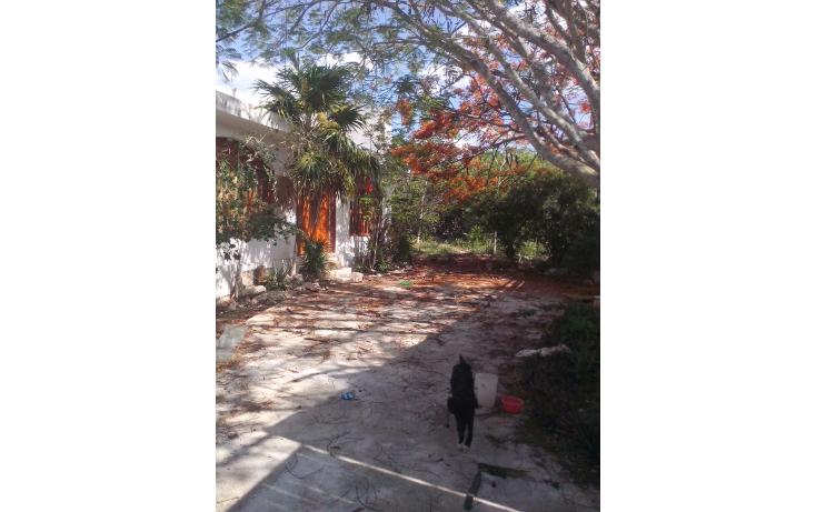 Foto de casa en renta en  , candelaria, valladolid, yucatán, 1633118 No. 08