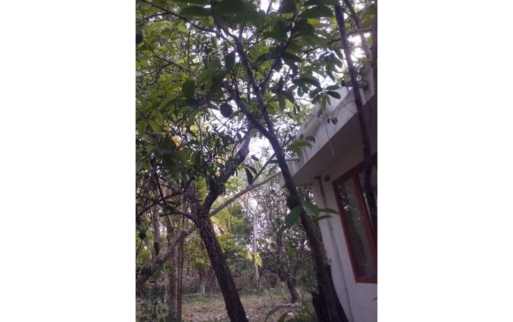 Foto de casa en renta en  , candelaria, valladolid, yucatán, 1633118 No. 13