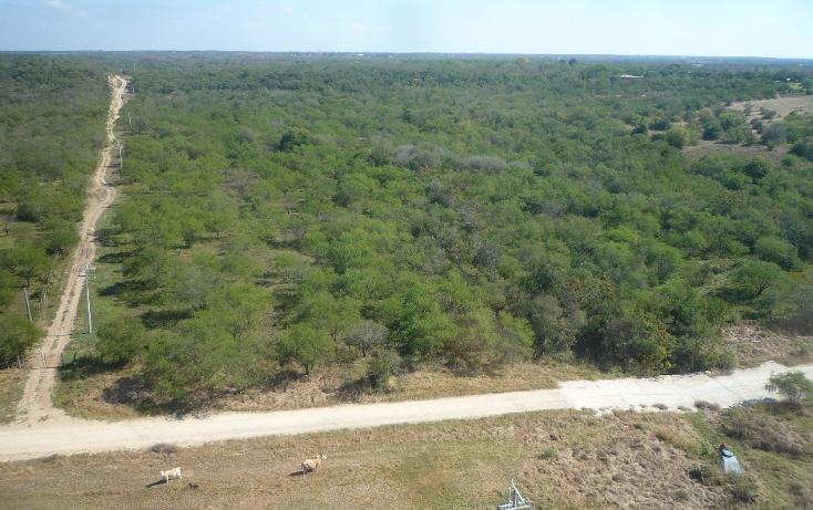 Foto de terreno habitacional en venta en  , canoas, montemorelos, nuevo león, 1040097 No. 03