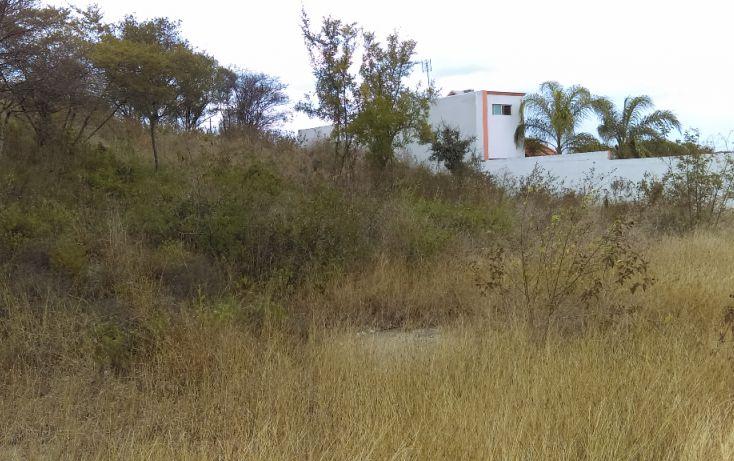 Foto de terreno habitacional en venta en, canoas, montemorelos, nuevo león, 1632546 no 06