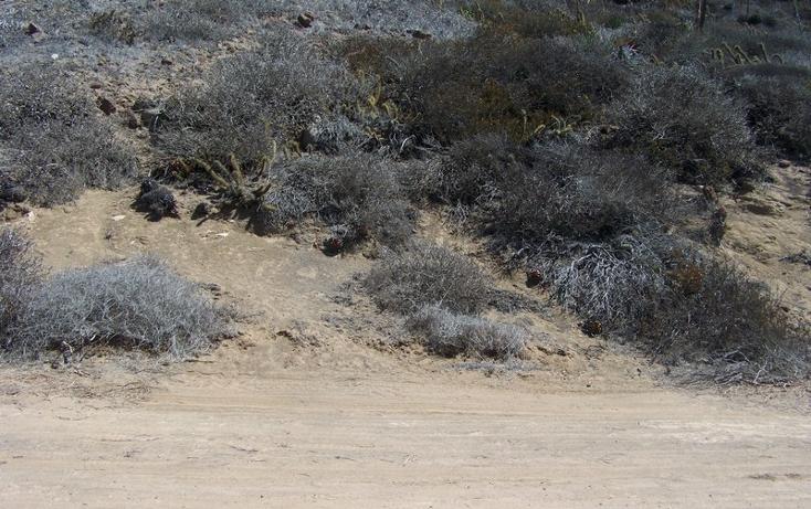 Foto de terreno comercial en venta en  , cantamar, playas de rosarito, baja california, 1211403 No. 06