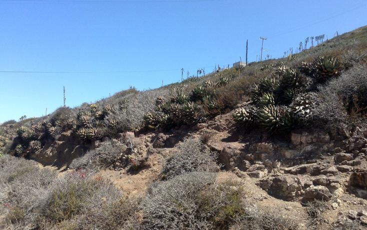 Foto de terreno comercial en venta en  , cantamar, playas de rosarito, baja california, 1211403 No. 13
