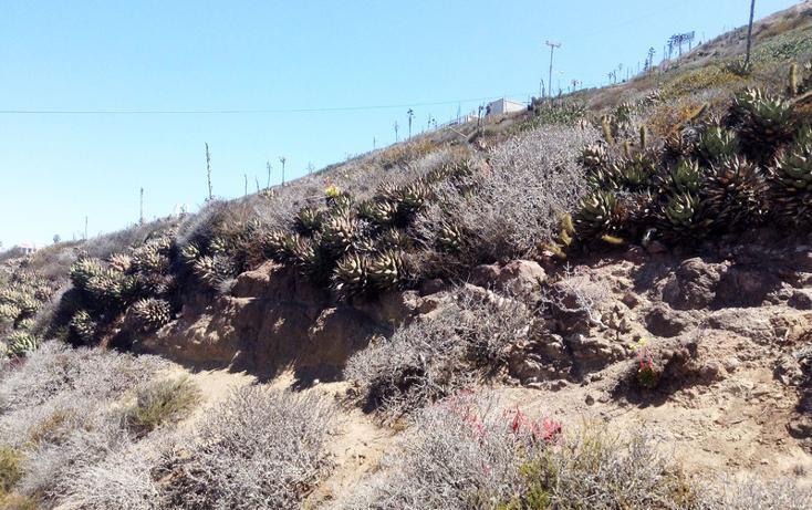 Foto de terreno comercial en venta en  , cantamar, playas de rosarito, baja california, 1211403 No. 15