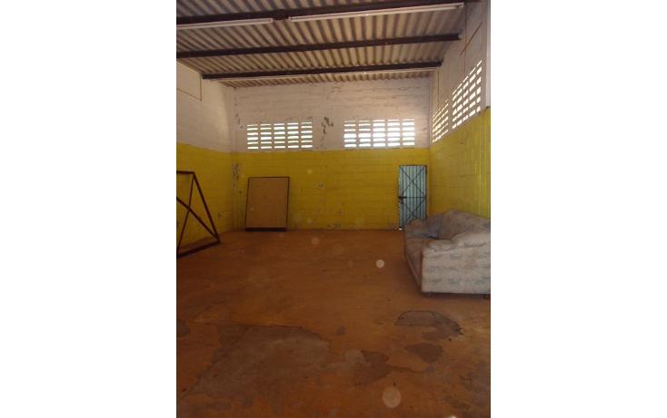 Foto de casa en venta en  , canticas, cosoleacaque, veracruz de ignacio de la llave, 1047303 No. 05