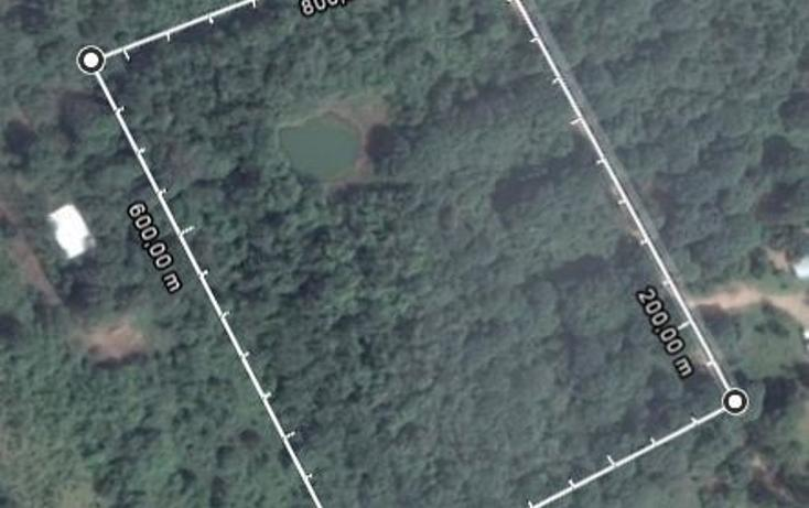 Foto de terreno habitacional en venta en  , canticas, cosoleacaque, veracruz de ignacio de la llave, 1958995 No. 04