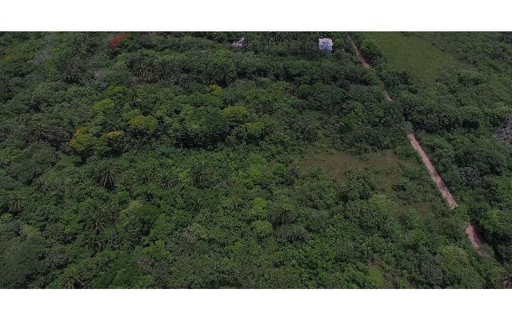 Foto de terreno habitacional en venta en  , canticas, cosoleacaque, veracruz de ignacio de la llave, 1960390 No. 07