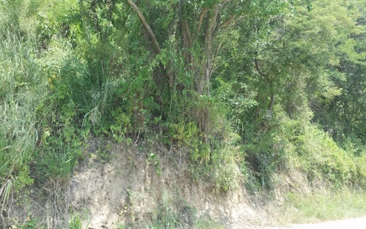 Foto de terreno habitacional en venta en caoba, el hujal, zihuatanejo de azueta, guerrero, 1406797 no 03
