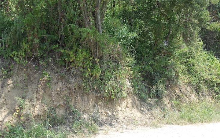 Foto de terreno habitacional en venta en caoba, el hujal, zihuatanejo de azueta, guerrero, 1406797 no 10