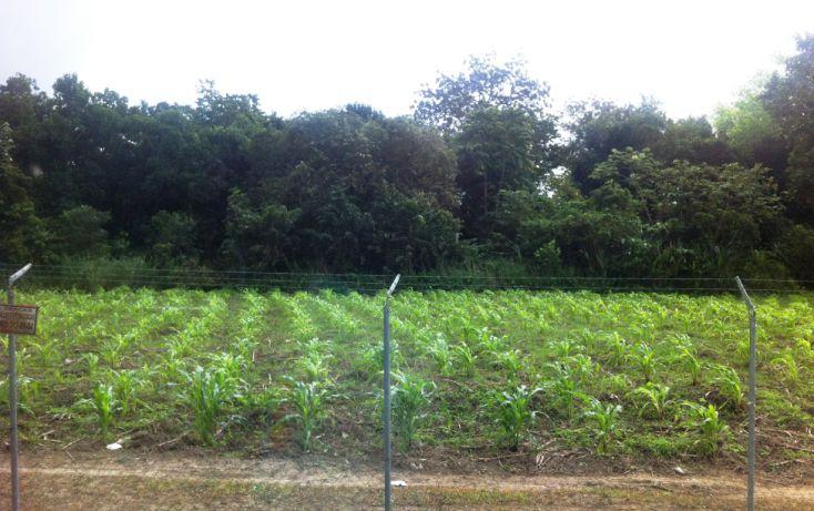 Foto de terreno comercial en venta en, cap reyes hernandez 2a secc, comalcalco, tabasco, 1072839 no 04