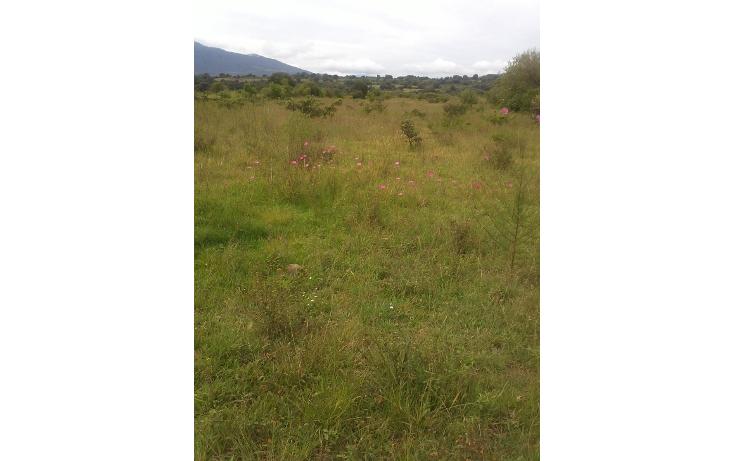 Foto de terreno habitacional en venta en  , capula, morelia, michoacán de ocampo, 1067359 No. 01