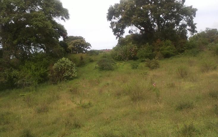 Foto de terreno habitacional en venta en  , capula, morelia, michoacán de ocampo, 1067359 No. 02
