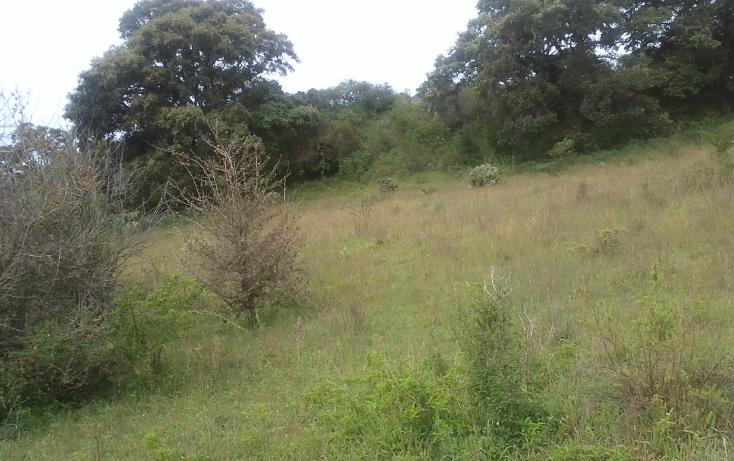 Foto de terreno habitacional en venta en  , capula, morelia, michoacán de ocampo, 1067359 No. 03