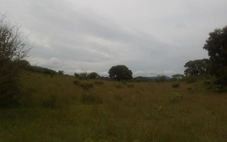 Foto de terreno habitacional en venta en  , capula, morelia, michoacán de ocampo, 1067359 No. 04