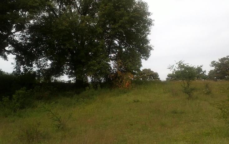 Foto de terreno habitacional en venta en  , capula, morelia, michoacán de ocampo, 1067359 No. 05