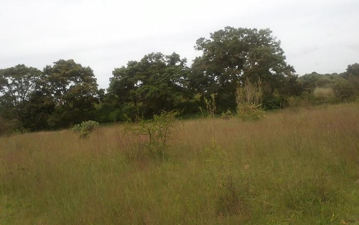 Foto de terreno habitacional en venta en  , capula, morelia, michoacán de ocampo, 1067359 No. 06