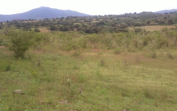 Foto de terreno habitacional en venta en  , capula, morelia, michoacán de ocampo, 1067359 No. 07