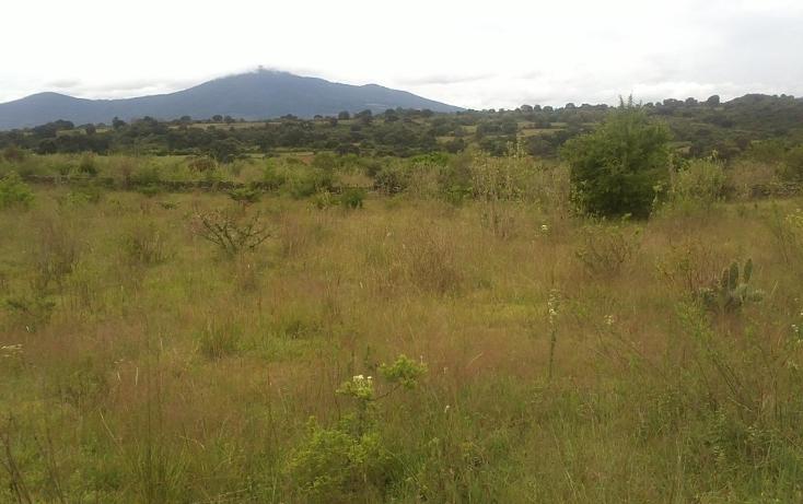 Foto de terreno habitacional en venta en  , capula, morelia, michoacán de ocampo, 1067359 No. 08