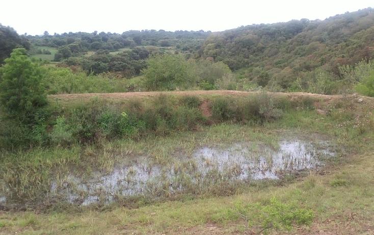 Foto de terreno habitacional en venta en  , capula, morelia, michoacán de ocampo, 1067359 No. 09