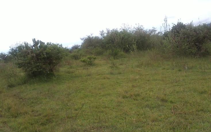 Foto de terreno habitacional en venta en  , capula, morelia, michoacán de ocampo, 1067359 No. 10