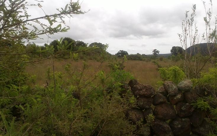 Foto de terreno habitacional en venta en  , capula, morelia, michoacán de ocampo, 1067359 No. 11