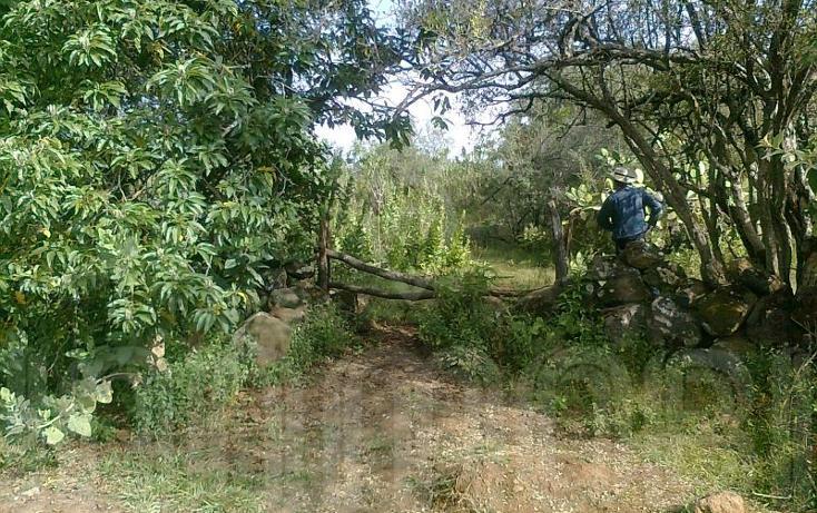 Foto de terreno comercial en venta en  , capula, morelia, michoacán de ocampo, 1425927 No. 04