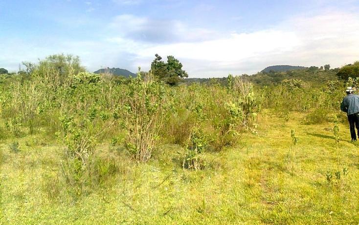 Foto de terreno comercial en venta en  , capula, morelia, michoacán de ocampo, 1425927 No. 05