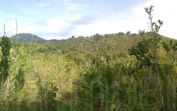 Foto de terreno comercial en venta en  , capula, morelia, michoacán de ocampo, 1425927 No. 06