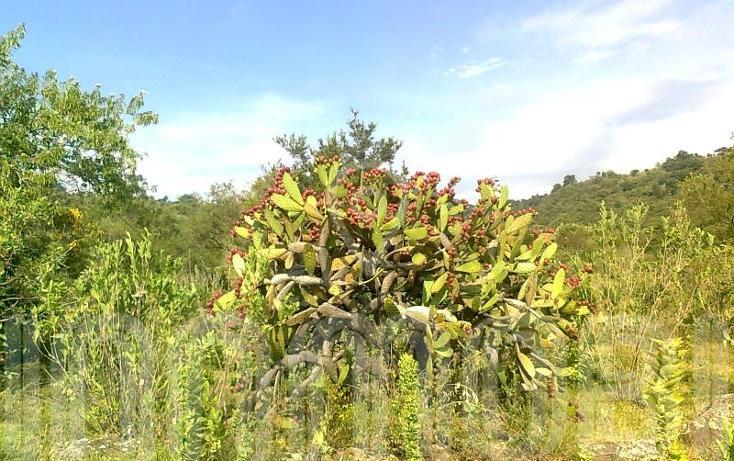 Foto de terreno comercial en venta en  , capula, morelia, michoacán de ocampo, 1425927 No. 07