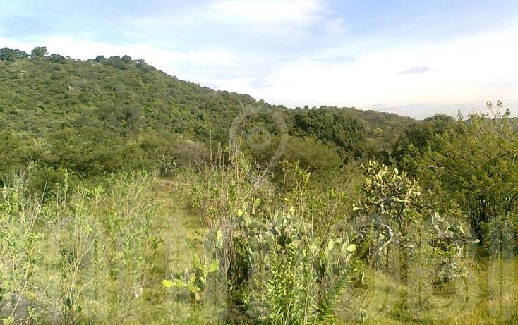 Foto de terreno comercial en venta en  , capula, morelia, michoacán de ocampo, 1425927 No. 08