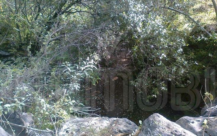 Foto de terreno comercial en venta en  , capula, morelia, michoacán de ocampo, 1425927 No. 09