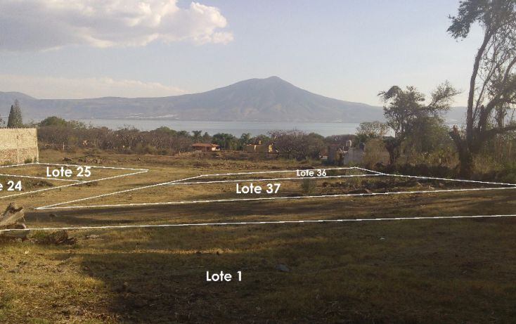 Foto de terreno habitacional en venta en cardenal norte l11, san juan cosala, jocotepec, jalisco, 1743333 no 01