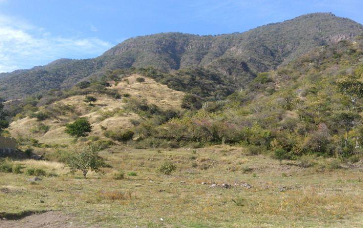 Foto de terreno habitacional en venta en cardenal norte l26, san juan cosala, jocotepec, jalisco, 1743313 no 03
