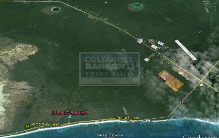 Foto de terreno habitacional en venta en carr boca paila, tulum centro, tulum, quintana roo, 328912 no 04