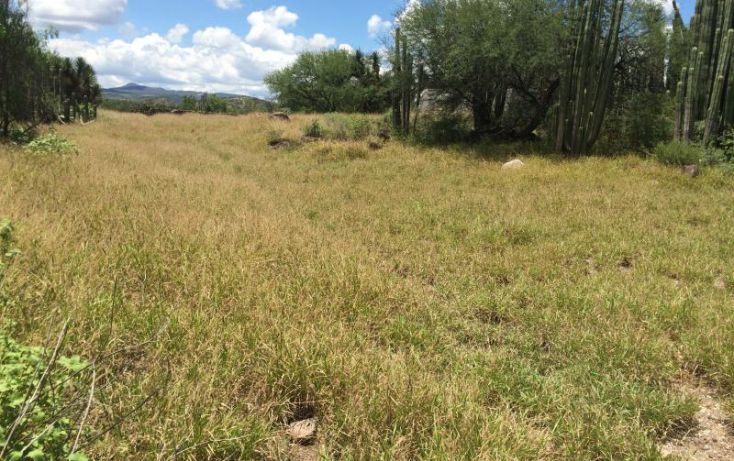 Foto de terreno habitacional en venta en carr tecozautla huichapan, pañhé, tecozautla, hidalgo, 1243825 no 04