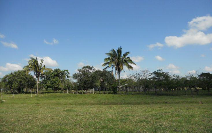 Foto de rancho en venta en carr villahermosa macuspana km 27 sn, macuspana centro, macuspana, tabasco, 1696846 no 03